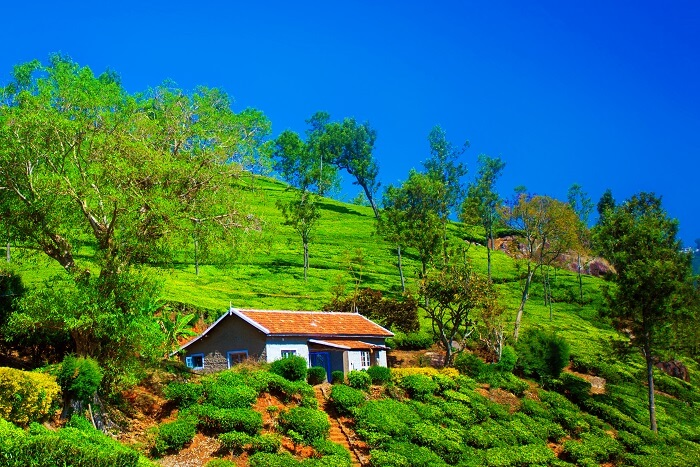 Coonoor-Most-Popular-Hill-Stations-in-South-India