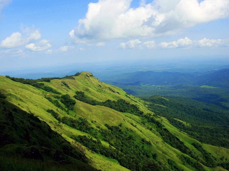 Munnar-Most-Popular-Hill-Stations-in-South-India